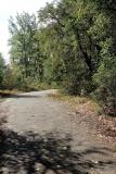 Droga ze Stalagu IID do Nowego Cmentarza (fot. Leszek Wątróbski)